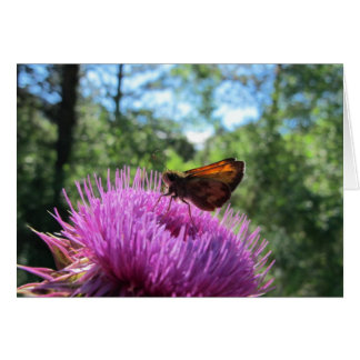 Butterfly on Musk Thistle Note Card