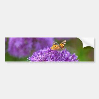 Butterfly on the Allium flower Bumper Sticker
