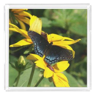 Butterfly, Perfume Tray. Acrylic Tray