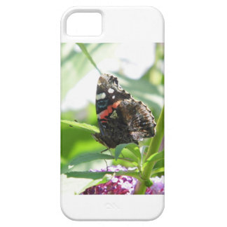 Butterfly photo (phone case) iPhone 5 cover
