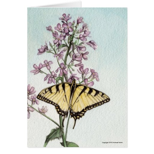 butterfly swallowtail greeting card