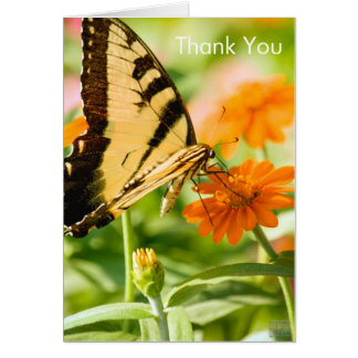 Butterfly Thank You Card Blank Inside