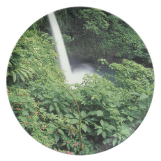 CA, Costa Rica. La Paz waterfall and impatients Plate
