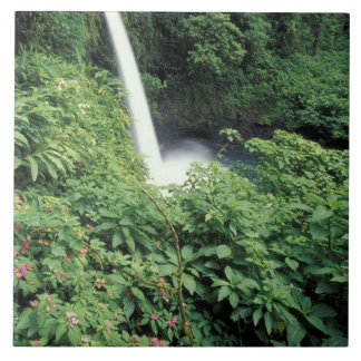 CA, Costa Rica. La Paz waterfall and impatients Tile