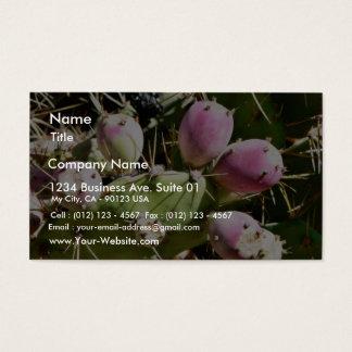 Cactus Fruits Business Card