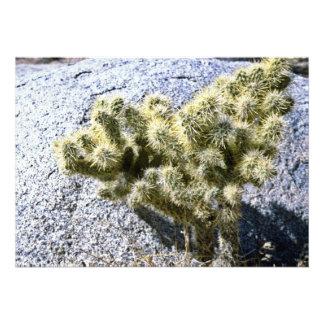 Cactus On Gray Rock Custom Invitation