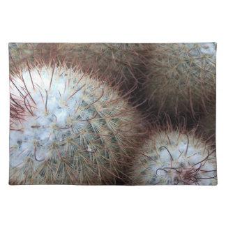 Cactus Place Mat