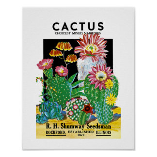 Cactus Seed Packet Label Poster