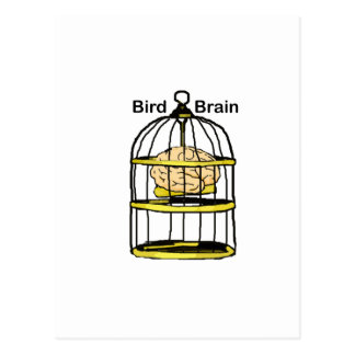 Caged Bird Brain Postcard