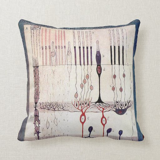 Cajal pillow