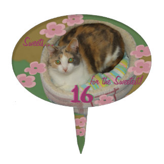 Cake, Cupcake Topper! Cat Lover! Sweet 16 Birthday Cake Toppers