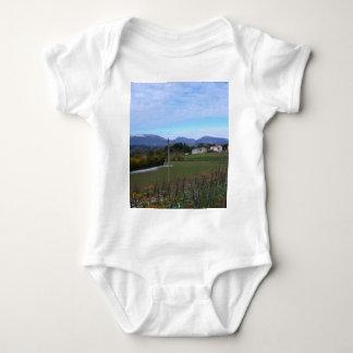 Calabrian Vineyard Infant Creeper