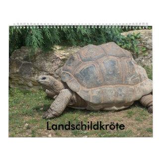 Calendar land turtle