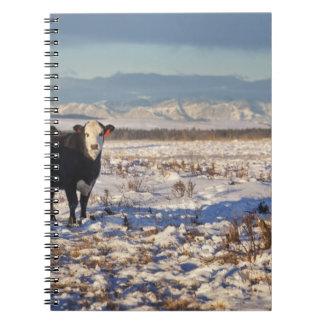 calgary, alberta, canada notebook