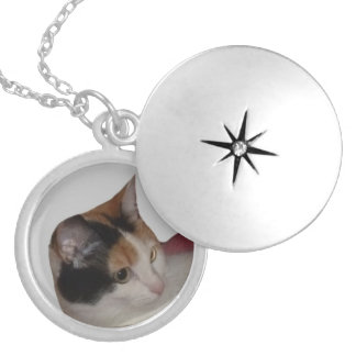 Calico Cat Portrait Silver Plated Necklace