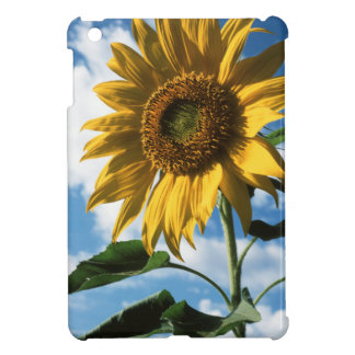 California, A Mammoth Sunflower (Helianthus) 2 iPad Mini Covers