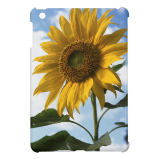 California, A Mammoth Sunflower (Helianthus) 4 Cover For The iPad Mini