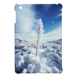 California, Anza Borrego Desert State Park 2 Case For The iPad Mini