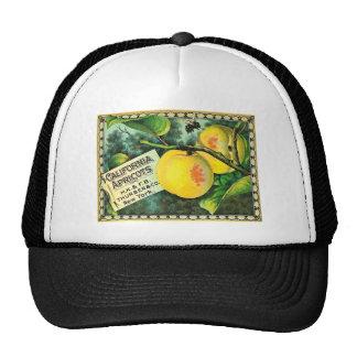 California Apricots - Vintage Crate Label Mesh Hat