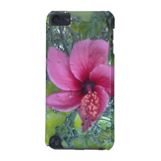 California Beauty iPod Touch (5th Generation) Cover