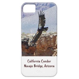 California Condor iPhone Cover