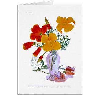 California poppy (Eschscholzia californica) Greeting Card