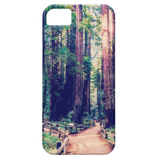 California Redwoods Barely There iPhone 5 Case