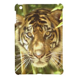 California, San Francisco Zoo, Sumatran Tiger iPad Mini Case