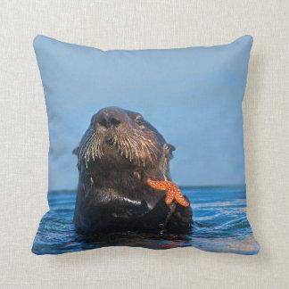 California Sea Otter with Red Sea Star - Morro Bay Cushion