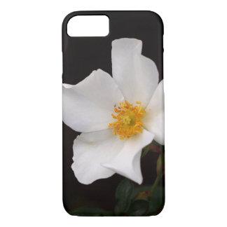California Winter Rose iPhone Case