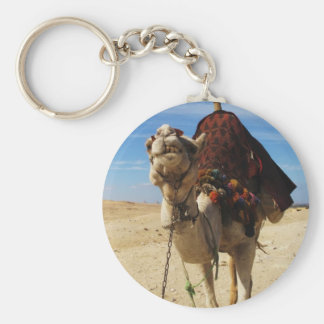 Camel in Egypt photograph Basic Round Button Key Ring