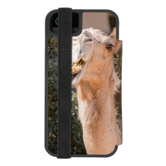 Camel staring while chewing incipio watson™ iPhone 5 wallet case