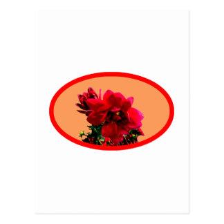 Camellia bg Orange The MUSEUM Zazzle Gifts Postcard