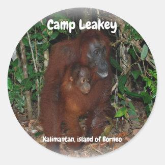 Camp Leakey in Tanjung Puting National Park Borneo Classic Round Sticker