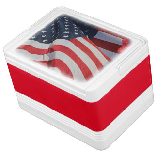 Can Cooler/American Flag Chilly Bin
