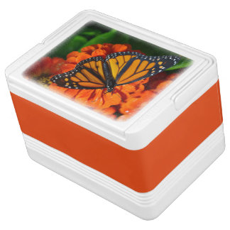 Can Cooler/Monarch Chilly Bin