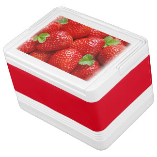 Can Cooler/Strawberries Chilly Bin