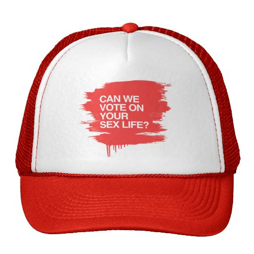 CAN WE VOTE ON YOUR SEX LIFE MESH HAT