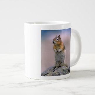 Canada, Alberta, Banff NP. A Golden-mantle Large Coffee Mug