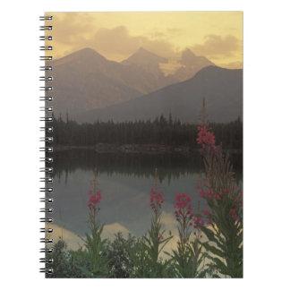 Canada, Alberta, Banff. Sunrise scenic of Notebook