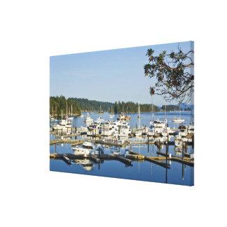 Canada, BC, Gulf Islands, Salt Spring Island, Gallery Wrapped Canvas