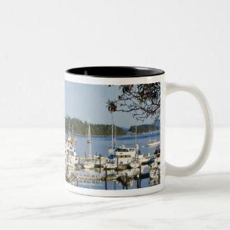 Canada, BC, Gulf Islands, Salt Spring Island, Two-Tone Coffee Mug