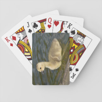Canada Goose Gosling Playing Cards