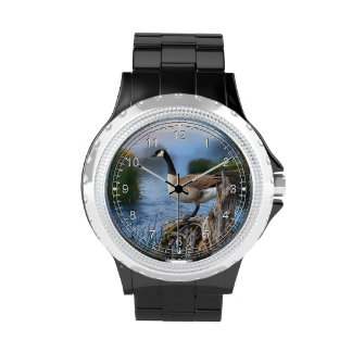 CANADA GOOSE ON THE SHASTA WRISTWATCHES