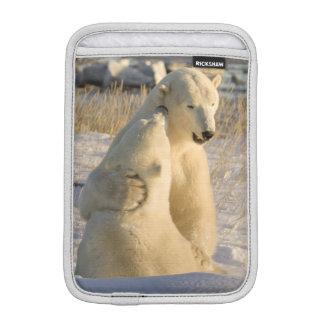 Canada, Manitoba, Hudson Bay, Churchill. iPad Mini Sleeve