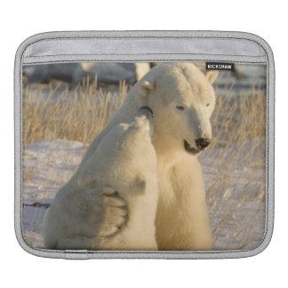 Canada, Manitoba, Hudson Bay, Churchill. iPad Sleeve