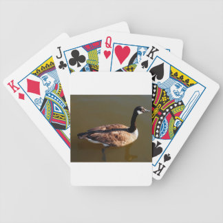 Canadian Goose w/Lazy Leg Bicycle Playing Cards