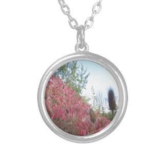 Canadian wild season colors nature natural images pendants