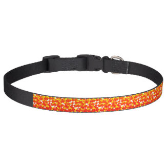 Candy Corn Pet Collar