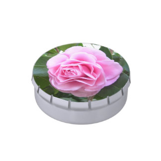 Candy Tin - Rose Pink Camillia